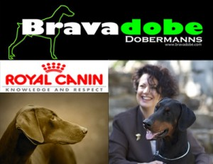 bravadobe-royal-canin2