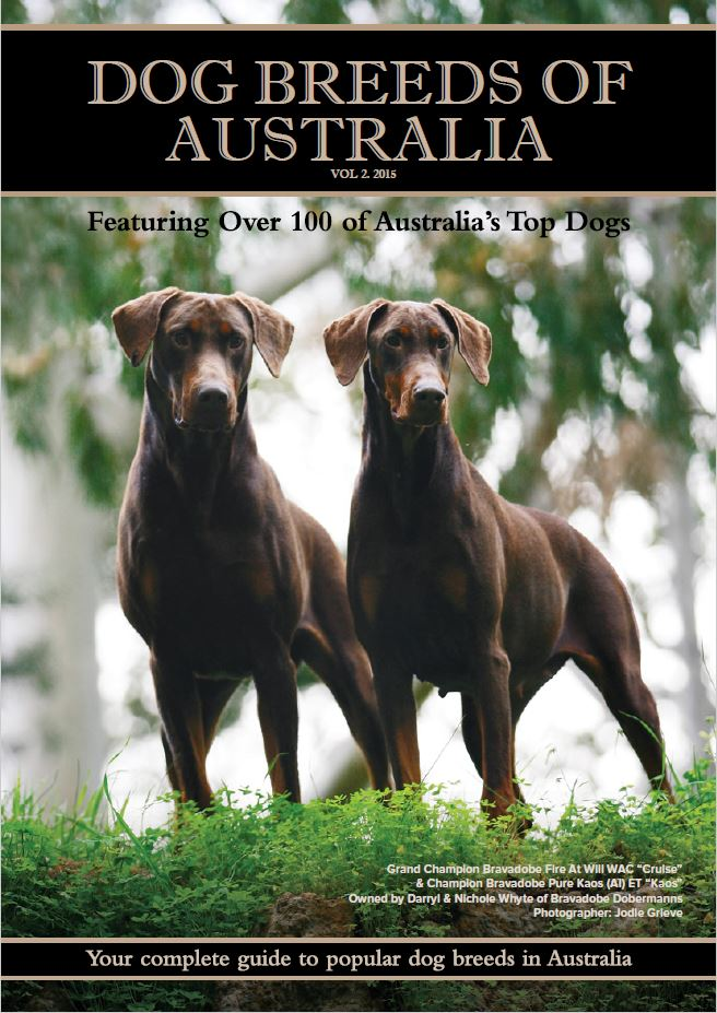 Dog Breeds of Australia - 2015 Breed Directory Volume 2 - Bravadobe Front Cover